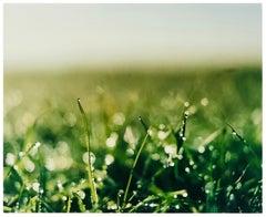 0°00 Longitude, 52°38N' Latitude, Dew - Landscape Color Photography