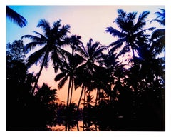 Infinity Pool, Poovar, Kerala - Tropical India color photography