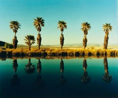Zzyzx Resort Pool II, Soda Dry Lake, California - Palm Print Color Photography