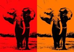 Two Elephant - In Orange & Red Orange, Screen Print