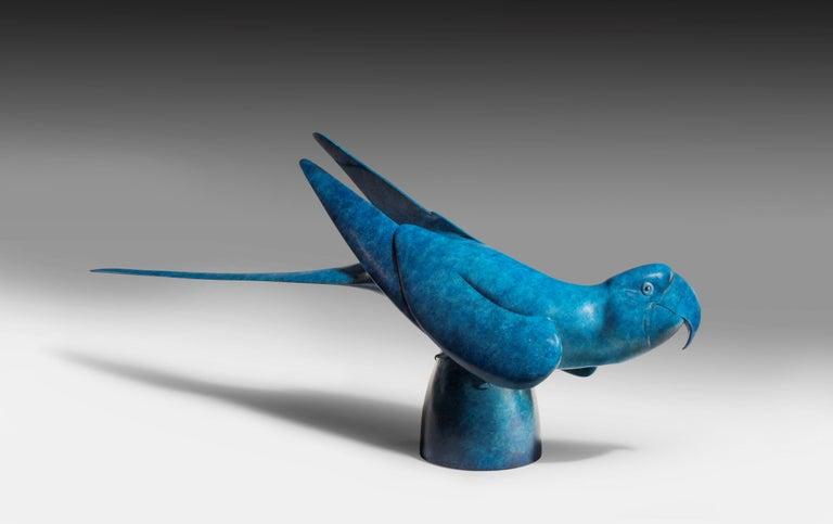Richard Smith b.1955 Figurative Sculpture - 'Macaw' Solid Bronze Bird. Modern British, Wildlife & Nature Scuplture