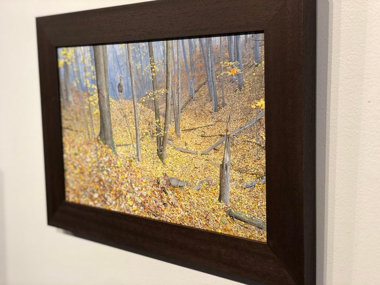 October Woods - Highly Detailed Painting of Deer in Leaf Blanketed Forest 1