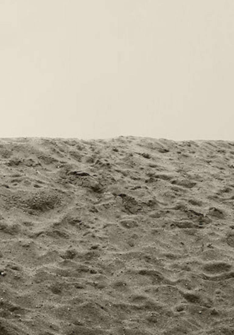 Men & Palm Tree. Sepia Archival pigment print, Medium - Contemporary Photograph by Ricky Cohete