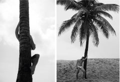 Palm Climb One, and Man and Palm Tree, Set from the Nostalgia series