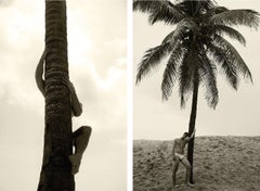 Palm Climb One, and Man and Palm Tree. Set from the Nostalgia series