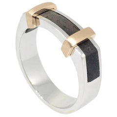 Ring, Platinum Gold, Modern Design, Ebony Wood