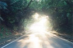 Untitled, from the series 'Illuminance' – Rinko Kawauchi, Street, Light, Trees