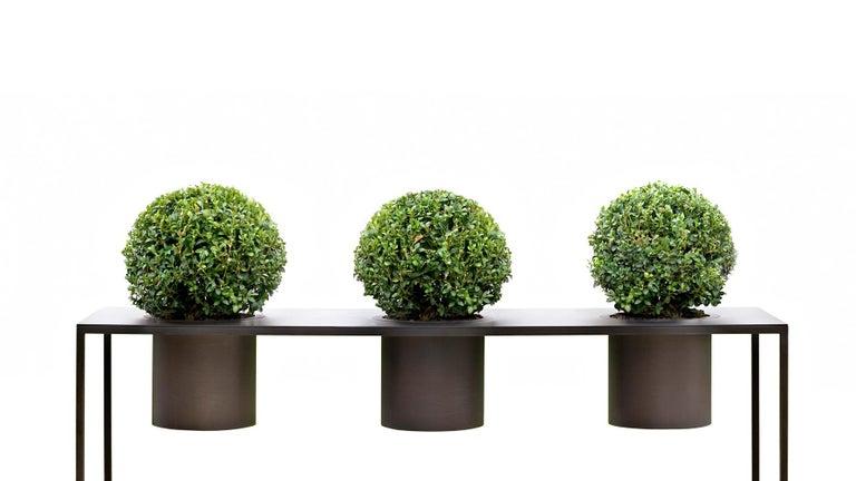 Riviera Drei Pflanzen Poliertes Eisen Vase Entworfen von Aldo Cibic 2