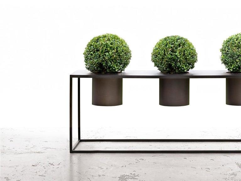 Riviera Drei Pflanzen Poliertes Eisen Vase Entworfen von Aldo Cibic 3