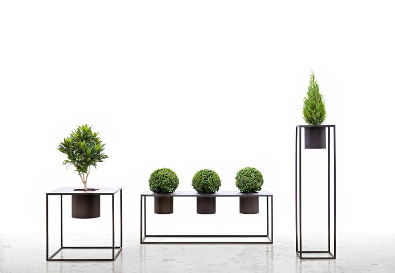 Riviera Drei Pflanzen Poliertes Eisen Vase Entworfen von Aldo Cibic 4