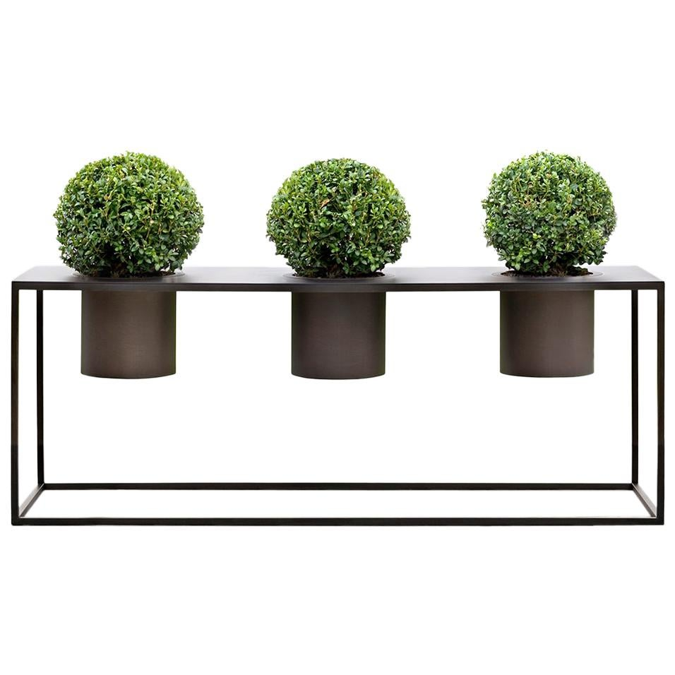 Riviera 3 Plants Burnished Iron Vase Designed by Aldo Cibic
