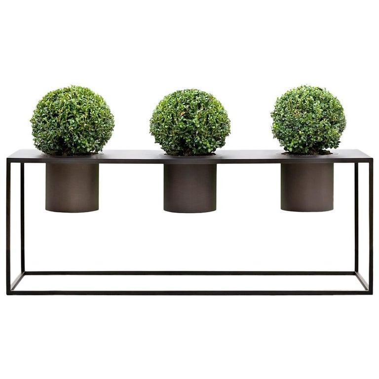 Riviera Drei Pflanzen Poliertes Eisen Vase Entworfen von Aldo Cibic 1