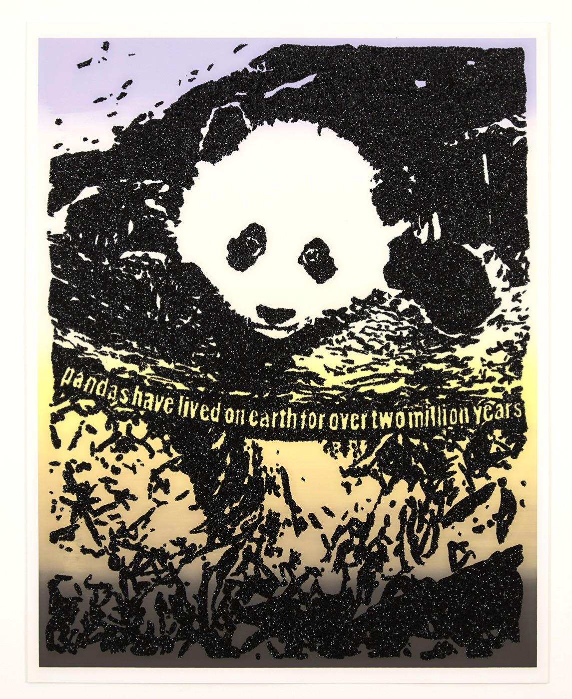 Giant Pandas Spend About 12 Hours a Day Eating Up to 15 Kilograms of Bamboo.
