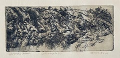 Metamorphosis, American Modernist Abstract Etching