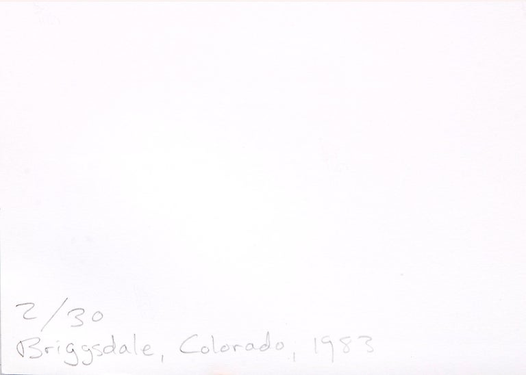 Edge of Briggsdale, Colorado, 1983 (From the 'Missouri West' series) For Sale 10