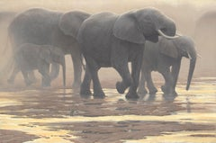 By the River - Elephants