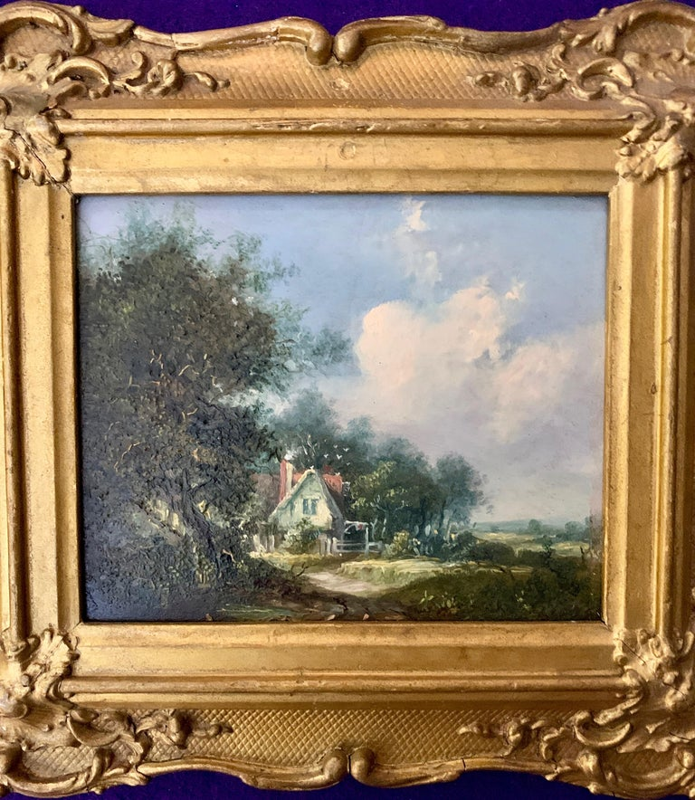 Burrows was born in Ipswich. He was the eldest son of a silversmith and was initially apprenticed to the family business at 40 Silent Street. In 1832 Burrows became a member of the newly formed Ipswich Society of Professional & Amateur Artists. On