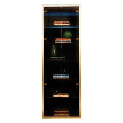 Robert Display Cabinet with 2 Glass Doors by Dom Edizioni