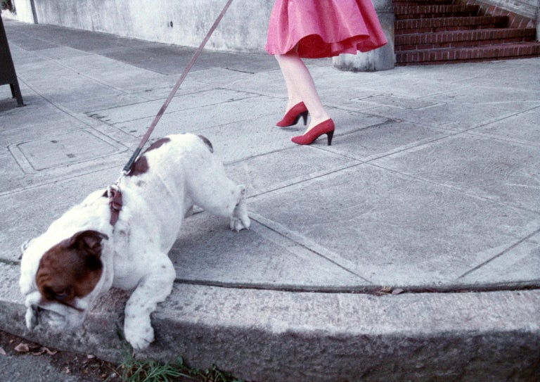 Robert Farber, Red Shoes and a Bulldog - Photograph by Robert Farber
