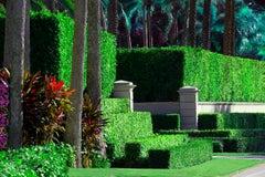 Hedge Fun - Billionaires Row - Palm Beach