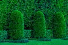 Hedge Fun - Miami Beach 3  ( Green topiary garden)