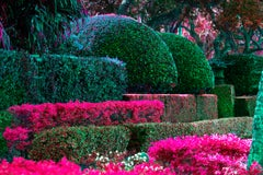 Hedge Fun - The Biltmore Hotel Coral Gables