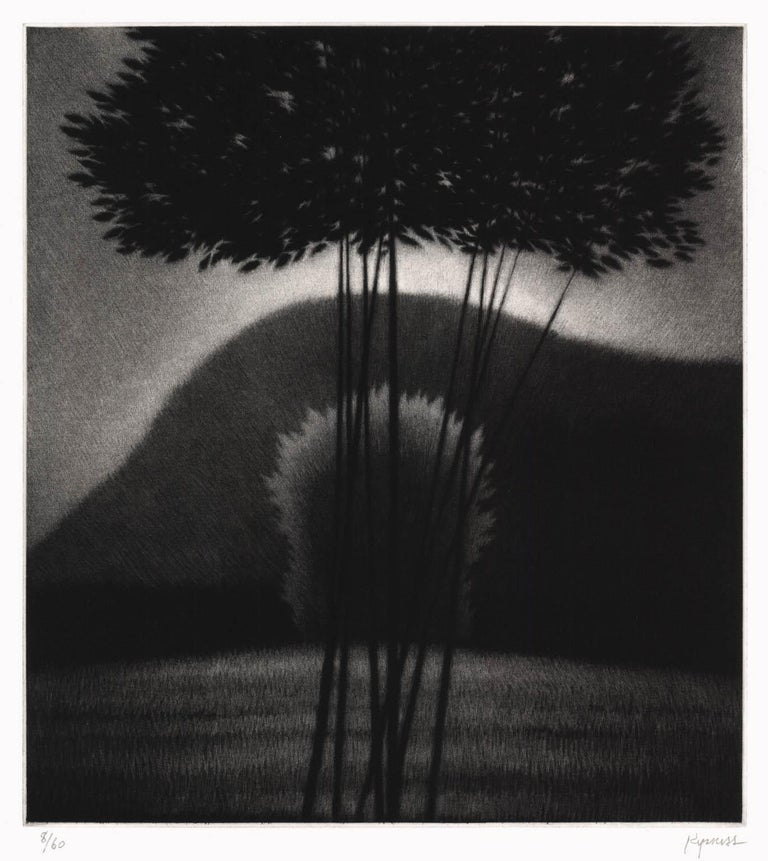 Robert Kipniss Landscape Print - Evening II