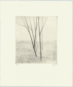 Slope w.five trees