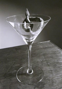 Copperhead Martini - Surreal black & white silver gelatin snake in glass