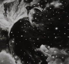 Robert Longo, Horsehead Nebula