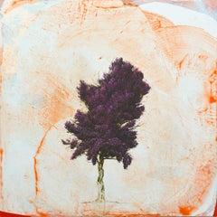 Crimson King 1, Robert Marchessault, Oil & Acrylic on Panel