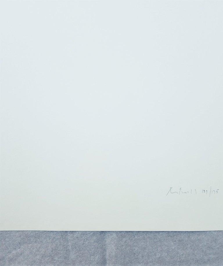 Peace Portfolio I: Untitled For Sale 3