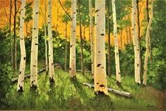 Backlit Aspens, Original Painting