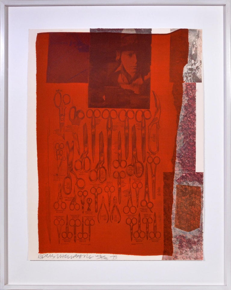 Robert Rauschenberg, Suite of Nine Prints, group of nine lithograph, signed, 197 For Sale 5
