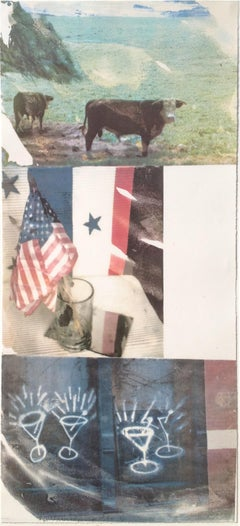 Witness (Speculations); 1996; Screenprint; 68 1/2 x 31 1/2 inches; Edition of 55