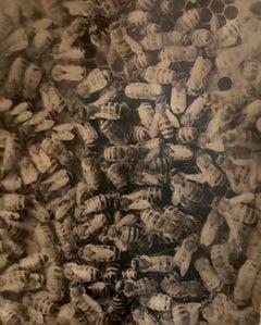 Hive, Santa Fe, NM, 2005
