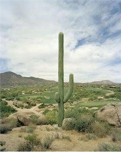 Desert Mountain, Scottsdale, Arizona
