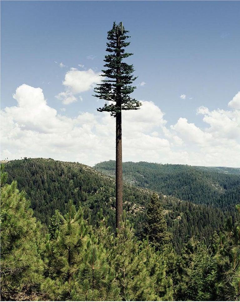 Robert Voit Landscape Photograph - Mono Lake, California