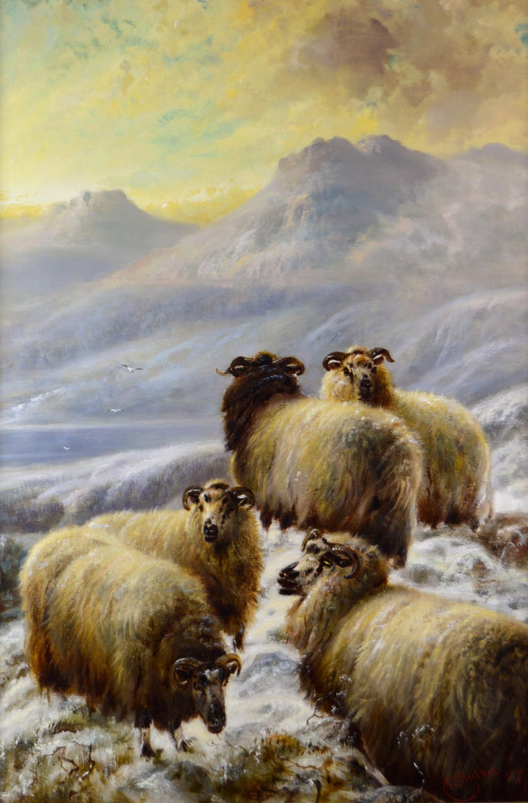 Scottish landscape oil painting of sheep in the winter Highlands - Painting by Robert Watson