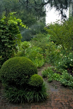 Garden, New York, 2012 by Roberta Fineberg