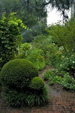 Urban Paradise, New York City Garden, Contemporary Landscape Photography