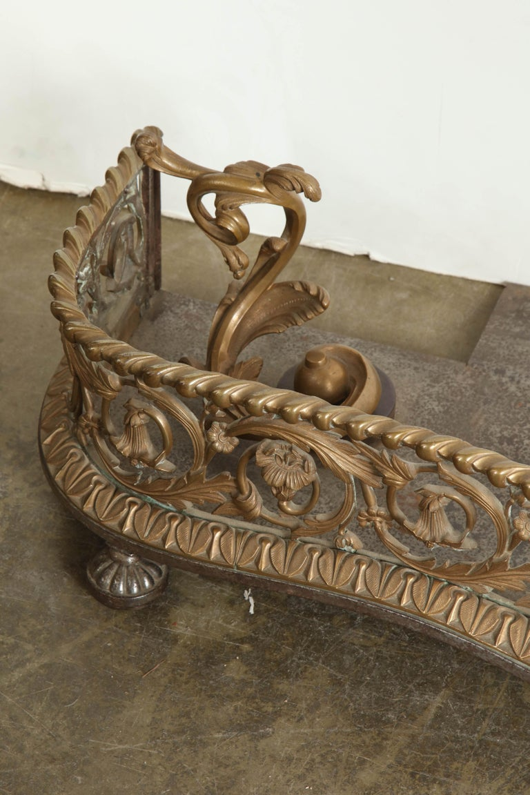 Rococo Bronze Fireplace Fender For Sale 2