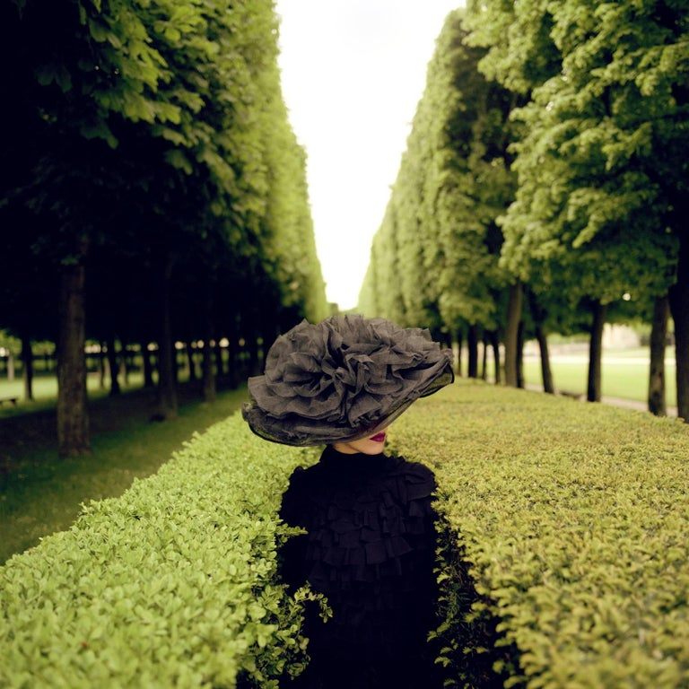 Woman with Hat Between Hedges- framed color Rodney Smith Photograph - Black Portrait Photograph by Rodney Smith