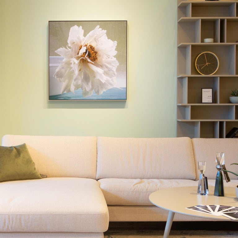 Peonies Eight, Still Life Photo of White Flower on Pale Sage Green Background - Photograph by Roger Ricco