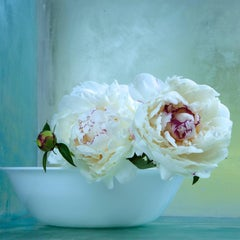 Peonies Nine, Botanical Still Life with White and Pink Flowers, Teal Background