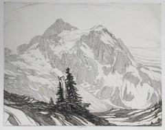 Avalanche Land