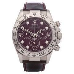 Rolex Daytona 116519 Men's White Gold Grossular Dial Watch