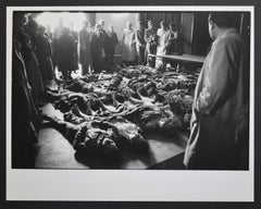 Hungarian objectors killed by the secret police, Hungary Magyarovar 1956.