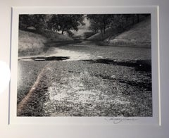 Pond and Blue Oaks, Consumnes River, California Original Silver Gelatin