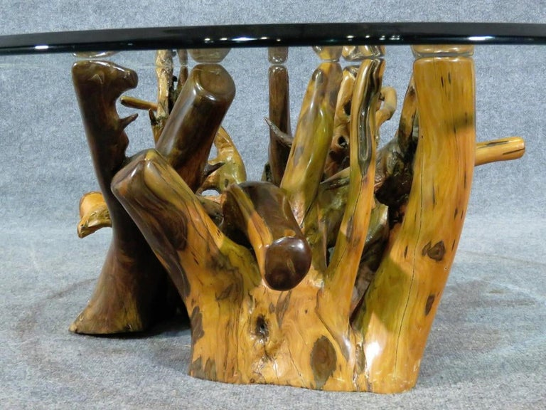 Mid-Century Modern Root Base Coffee Table For Sale